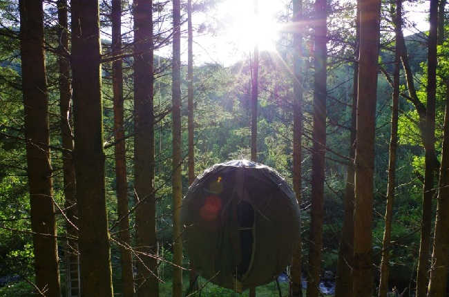 Tree Tent in the forest (image by Luminair). camping. adventure