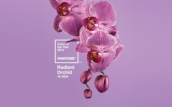 Pantone Colour of the Year 2014 - Radiant Orchid (image from Pantone)